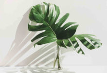 Photo of 10 Funky Accessories For Your Living Room